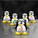 İleri Seviye Linux Eğitimi Başlıyor